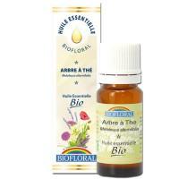 Arbre à thé - Huile essentielle Bio - Biofloral