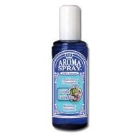 Aromaspray N° 2 Girofle-Camphre