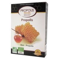 Propolis bio - 20 ampoules - Redon