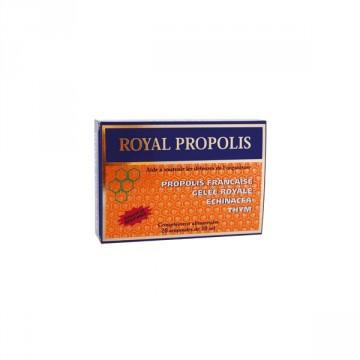 Royal propolis - Nutrition Concept - 20 ampoules