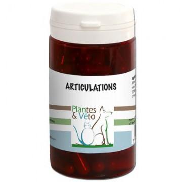 Articulations- plantes et véto - 50 gélules